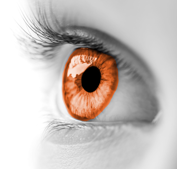 Picture of an eye / Photo d'un oeil